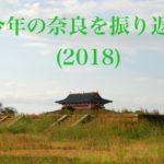 今年の奈良を振り返る(2018)