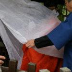 例大祭(漢國神社)