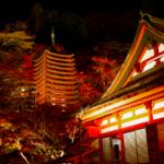 紅葉ライトアップ(談山神社)