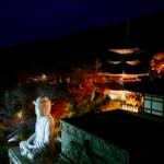紅葉ライトアップ(壺阪寺)