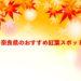 奈良県のおすすめ紅葉スポット